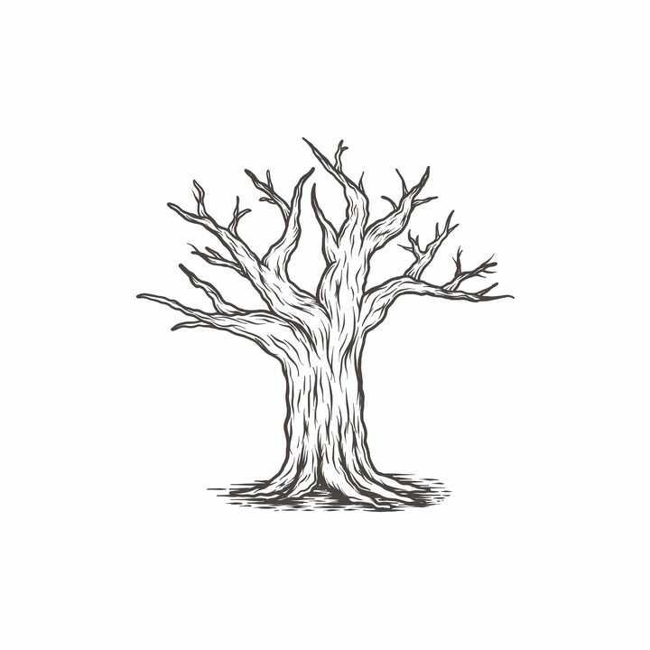 手绘线描风格枯萎的大树免抠矢量图素材