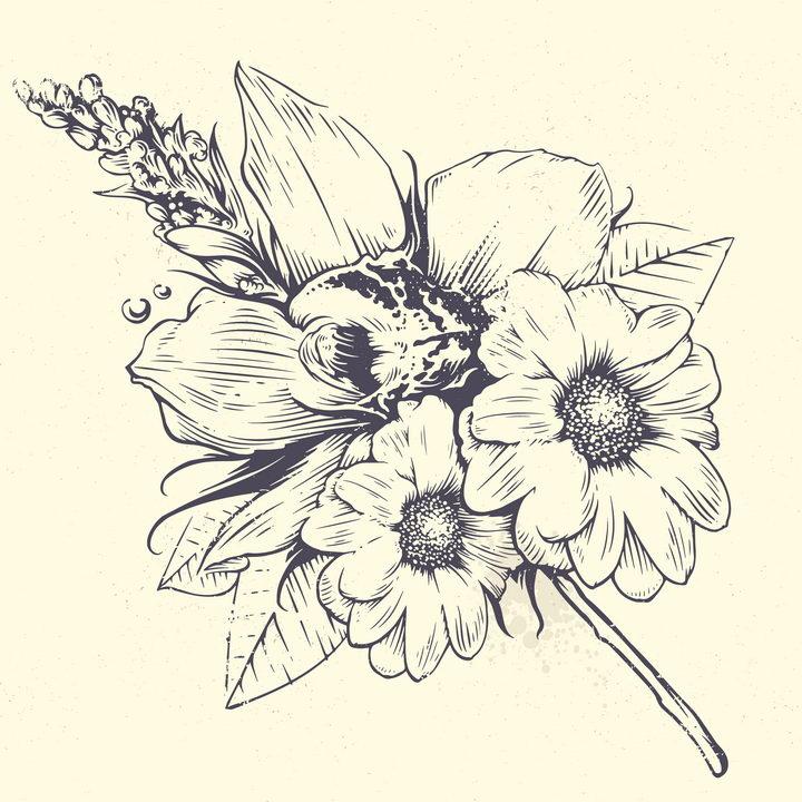 手绘素描风格盛开的菊花花朵和叶子图片免抠矢量素材 生物自然-第1张