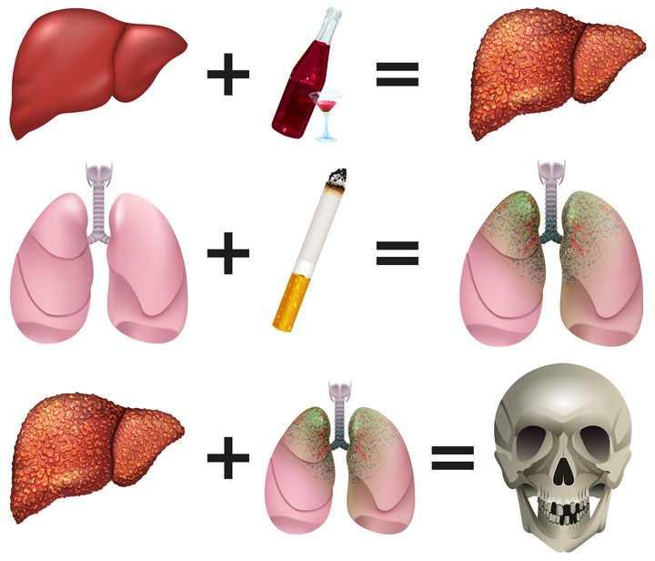 写实风格抽烟喝酒对肺部和肝脏的伤害禁烟禁酒配图图片免抠矢量素材
