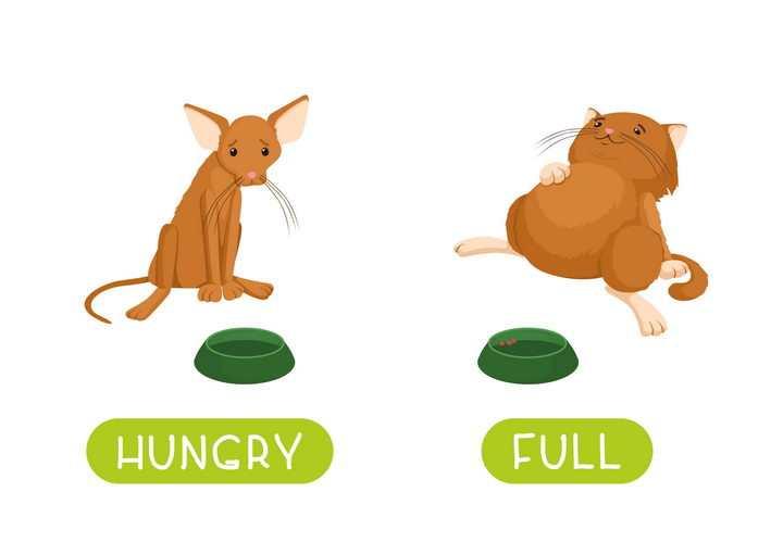 卡通吃太少和吃太多的猫咪图片免抠矢量图
