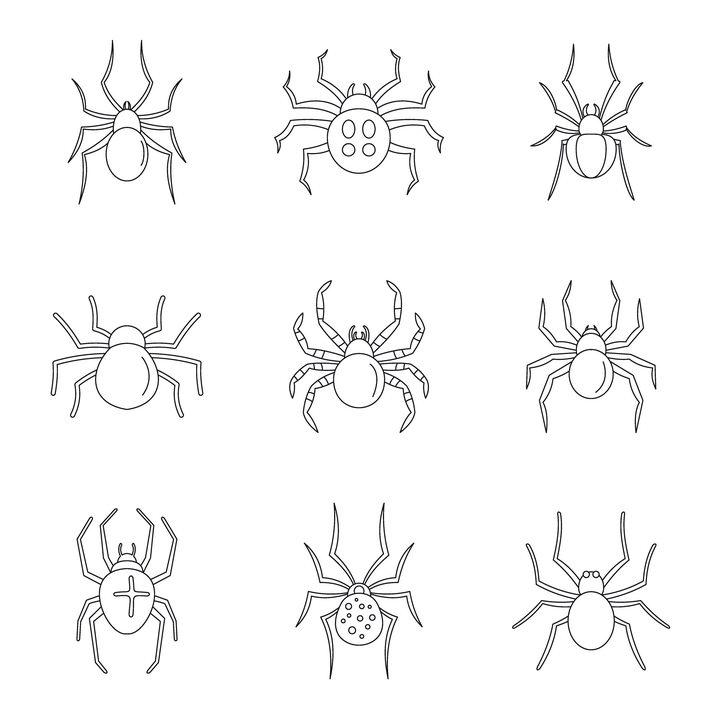 9款黑色线条蜘蛛图案图片免抠矢量素材 生物自然-第1张