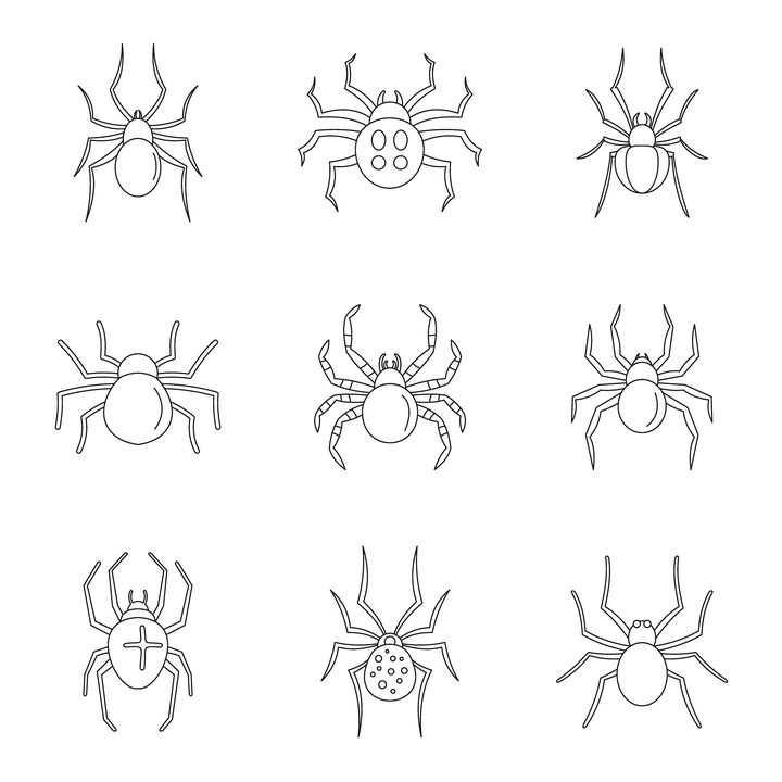 9款黑色线条蜘蛛图案图片免抠矢量素材