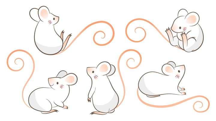 5款可爱的卡通老鼠鼠年图片免抠矢量图素材