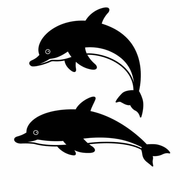 黑白色海豚海洋野生动物图案png图片免抠矢量素材