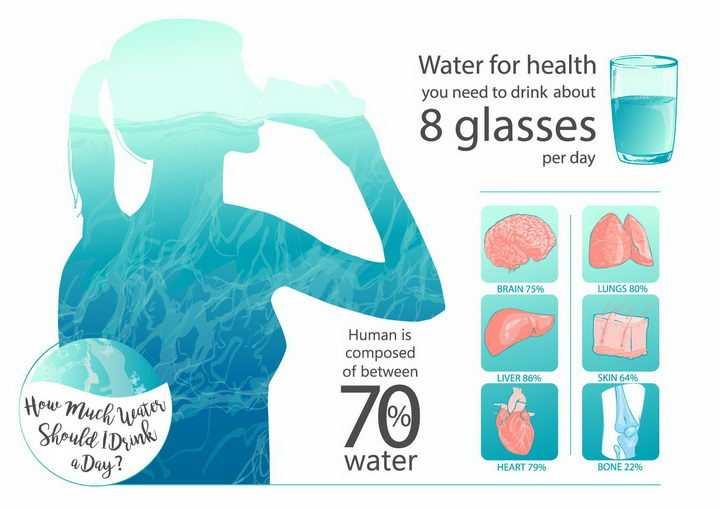 彩绘风格喝水的美女和喝水对身体器官健康的好处png图片免抠矢量素材