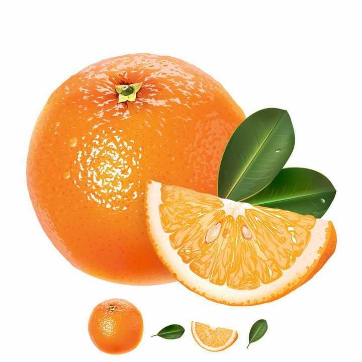 切开的带叶子橙子美味水果png图片免抠矢量素材