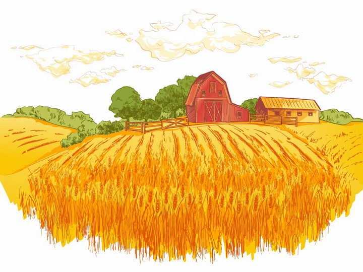 彩绘风格乡村黄色丰收麦田和远处的农舍树林风景图png图片免抠矢量素材