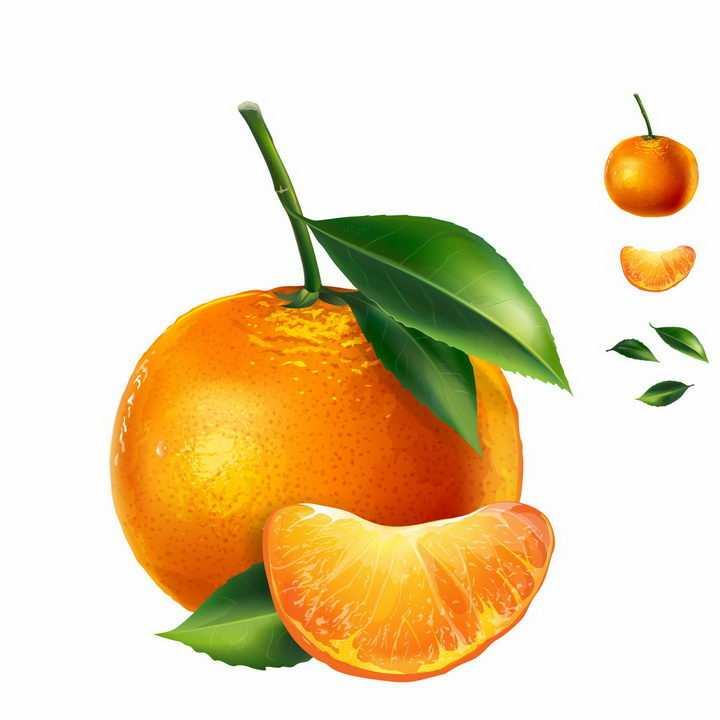 带叶子的橘子美味水果png图片免抠矢量素材