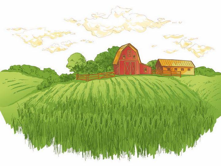 彩绘风格乡村绿色麦田和远处的农舍树林风景图png图片免抠矢量素材 插画-第1张