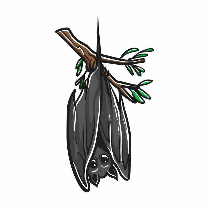 手绘风格倒挂在枝头上的卡通蝙蝠png图片免抠矢量素材