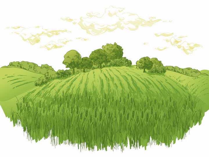 彩绘风格乡村绿色麦田和远处的树林风景图png图片免抠矢量素材