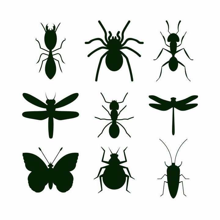 白蚁蜘蛛蚂蚁蜻蜓蝴蝶甲虫等昆虫虫子剪影png图片免抠矢量素材