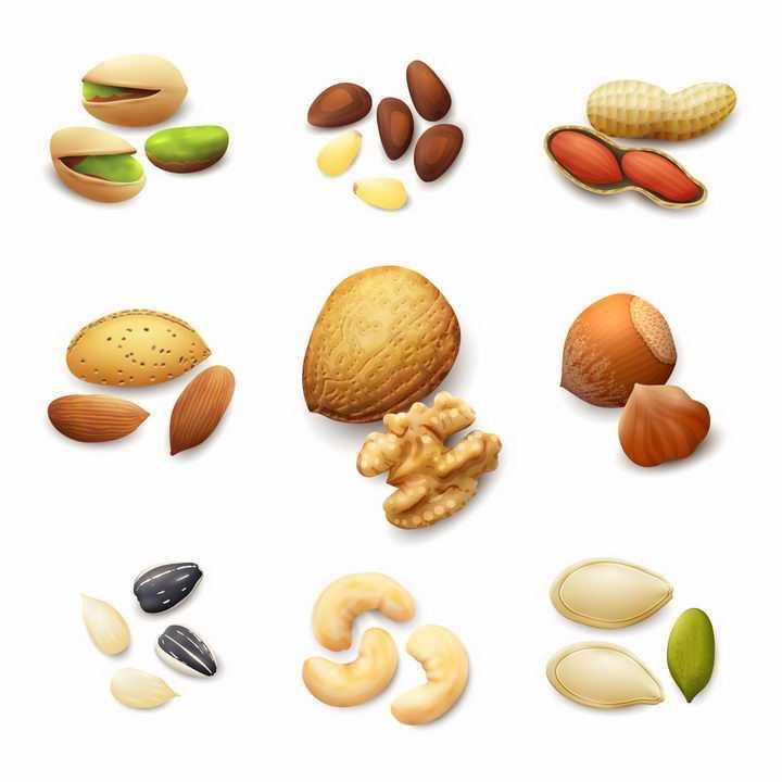 开心果松子花生巴旦木核桃松果瓜子腰果南瓜子美味坚果干果零食png图片免抠eps矢量素材