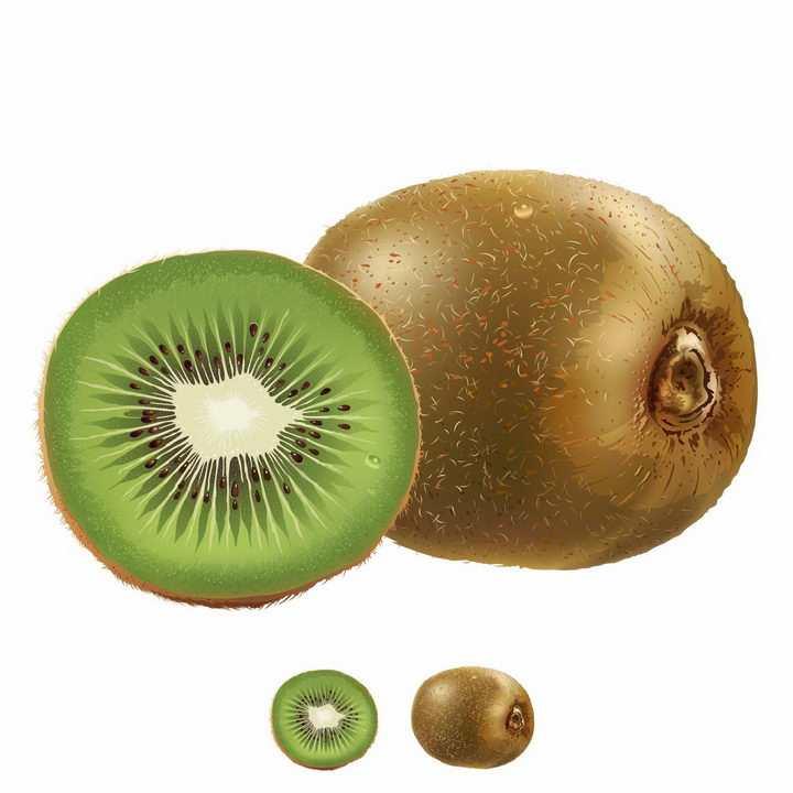 切开的猕猴桃奇异果水果横切面美味水果png图片免抠矢量素材