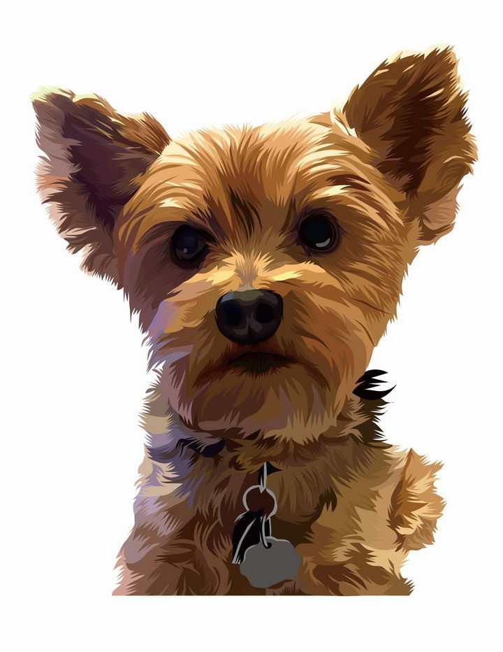 彩绘约克夏梗宠物狗品种png图片免抠矢量素材