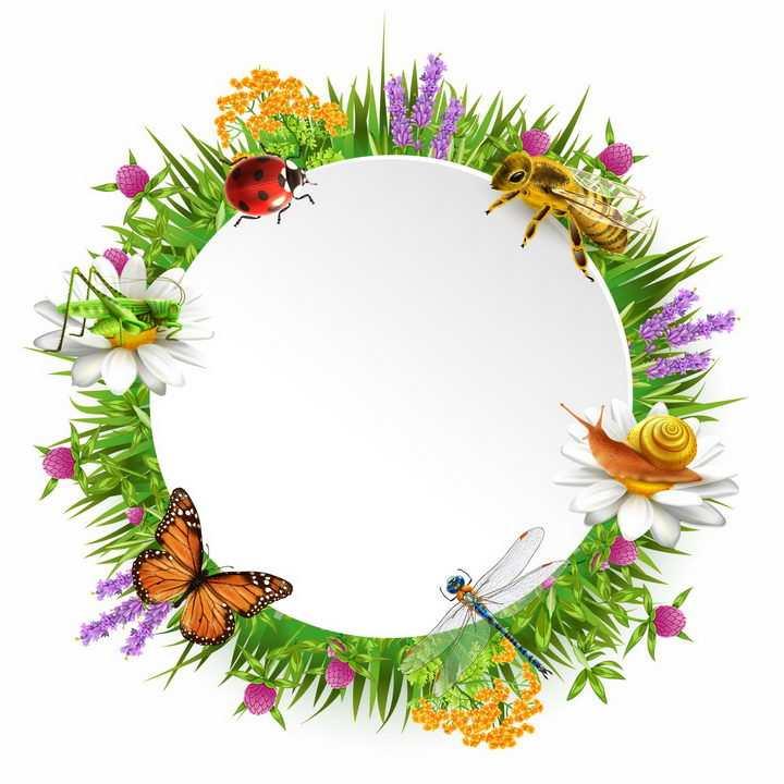七星瓢虫蜜蜂蜗牛蜻蜓蝴蝶蚂蚱青草地和花丛组成的文本框标题框png图片免抠矢量素材