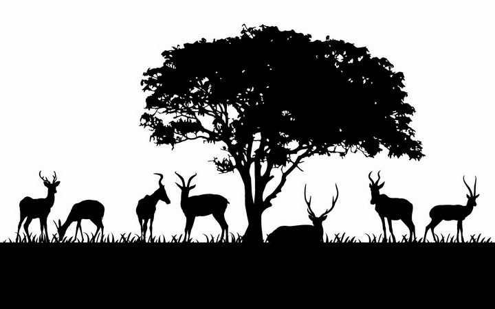 非洲大草原大树下的草地上一群正在吃草的羚羊非洲野生动物剪影png图片免抠矢量素材