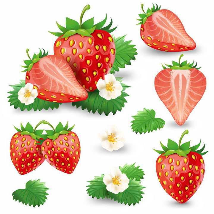 各种草莓横切面和草莓叶子花美味水果png图片免抠EPS矢量素材