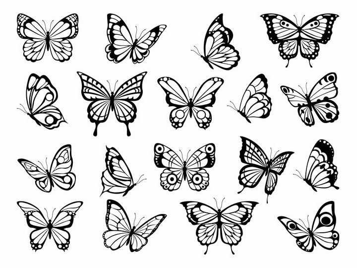 各种黑白色蝴蝶图案png图片免抠矢量素材
