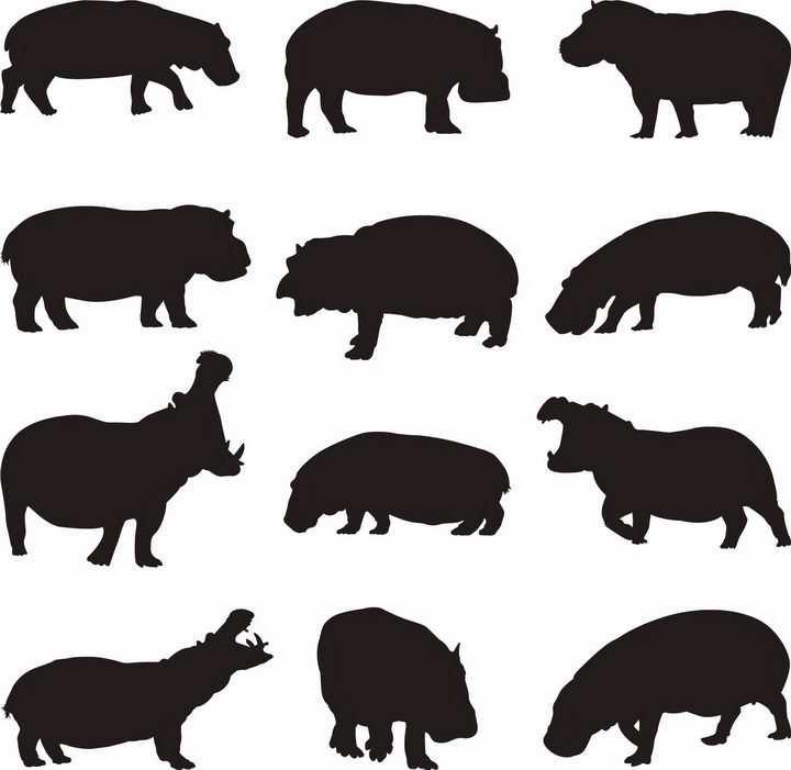 12款河马非洲野生动物剪影png图片免抠矢量素材