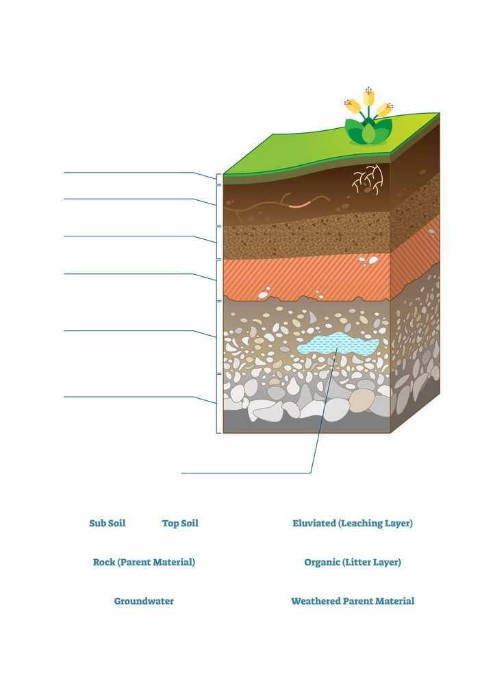 地层土壤分层结构解剖图地理配图png图片免抠矢量素材