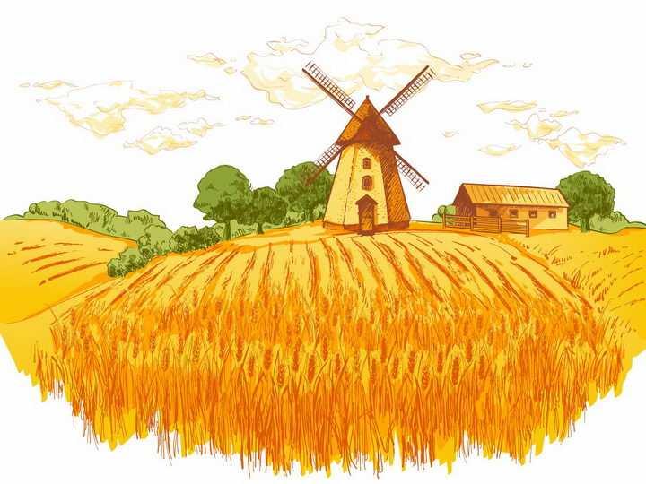 彩绘风格乡村黄色丰收麦田和远处的大风车农舍树林风景图png图片免抠矢量素材