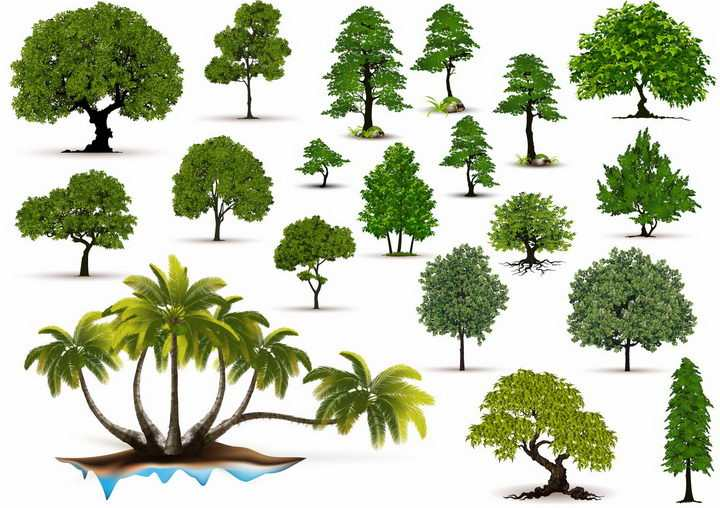 各种绿色大树盆栽盆景树png图片免抠矢量素材