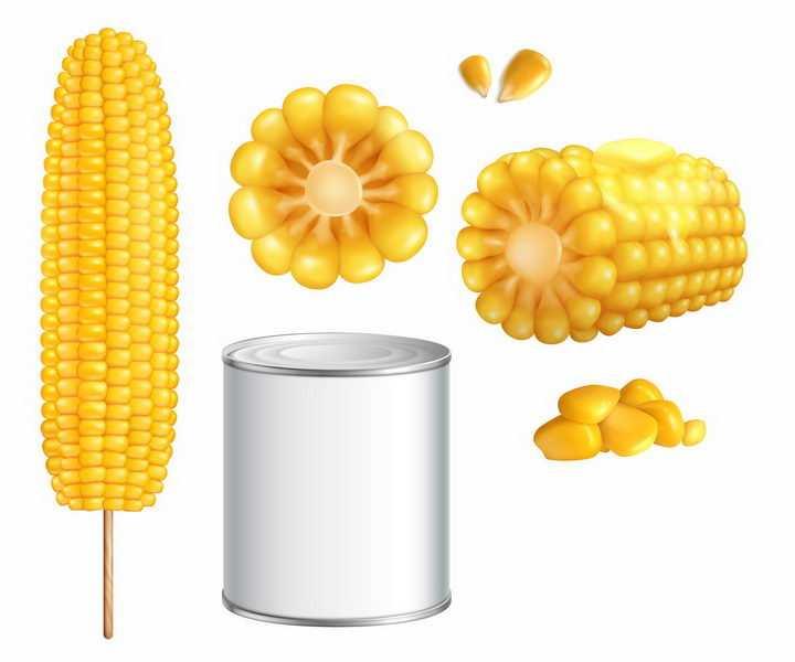 糯香的玉米棒子玉米粒和玉米罐头等玉米制品美食png图片免抠矢量素材