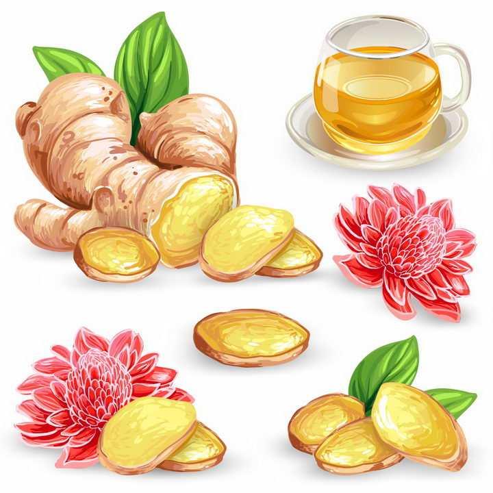 彩绘风格的生姜和生姜茶养生茶美味饮料png图片免抠eps矢量素材