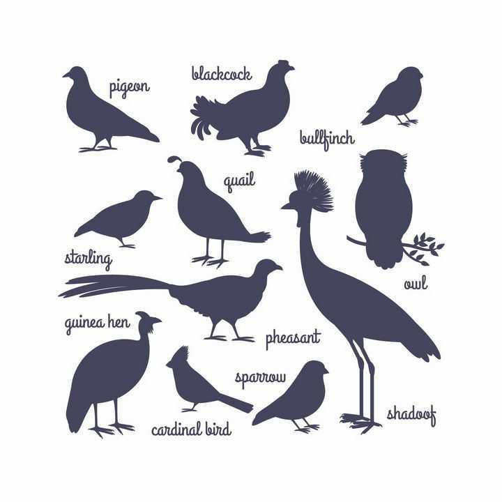 鸽子麻雀猫头鹰等各种鸟类野生动物剪影png图片免抠矢量素材