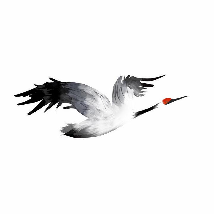 水墨画风格飞行中的仙鹤丹顶鹤png图片免抠素材 生物自然-第1张