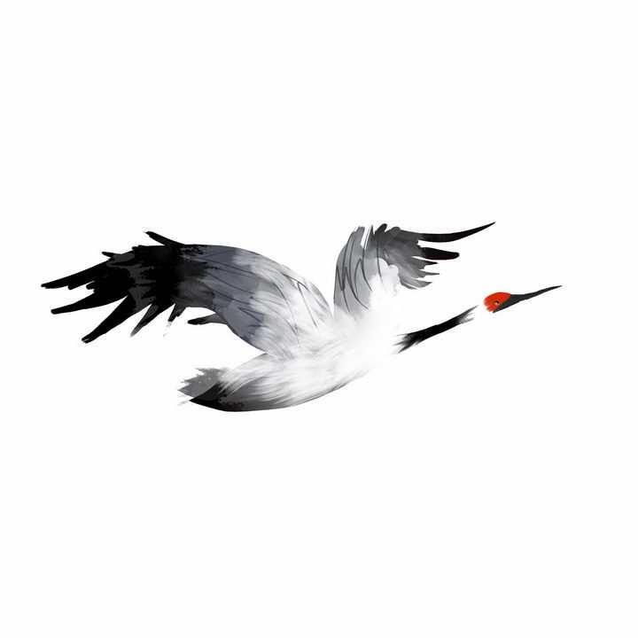 水墨画风格飞行中的仙鹤丹顶鹤png图片免抠素材