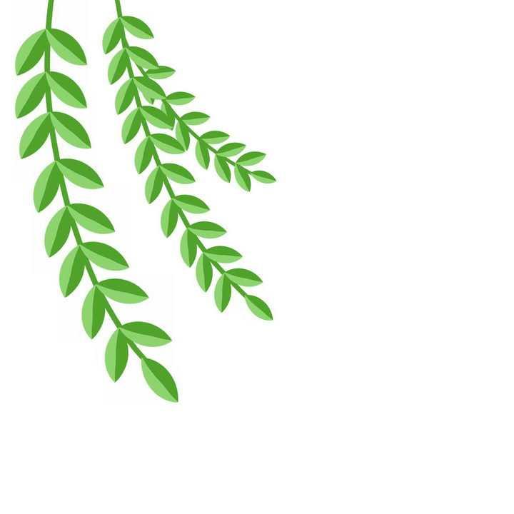 卡通风格春天里的树叶柳枝png图片免抠素材