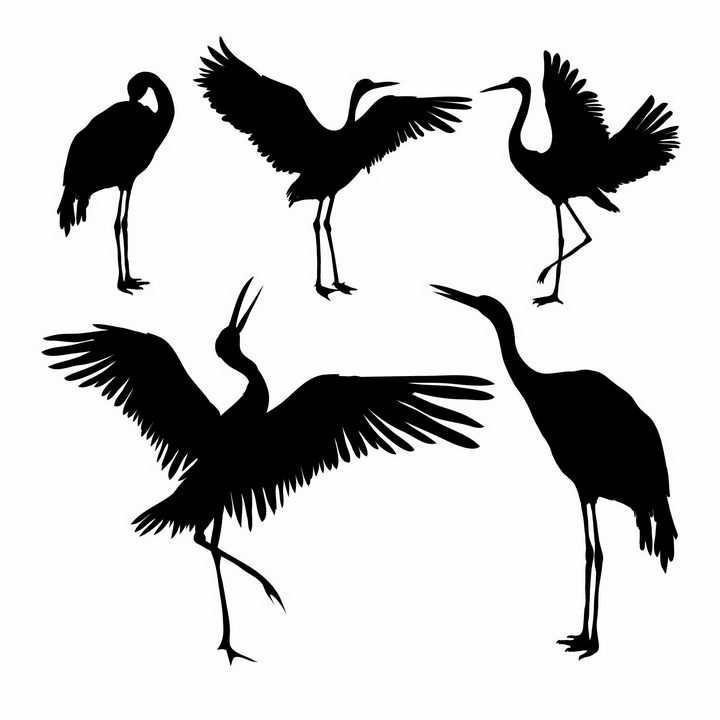 5款仙鹤丹顶鹤剪影png图片免抠矢量素材