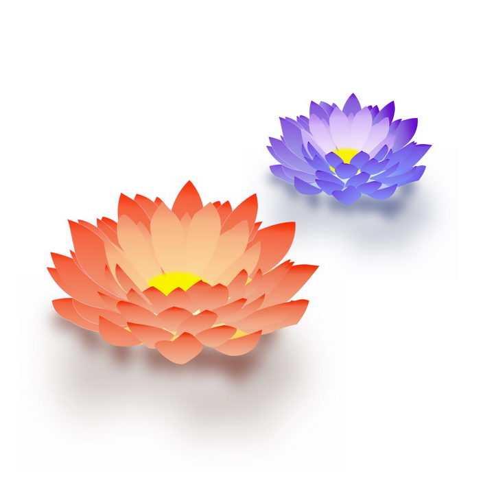 盛开的红色和紫色莲花png图片免抠素材