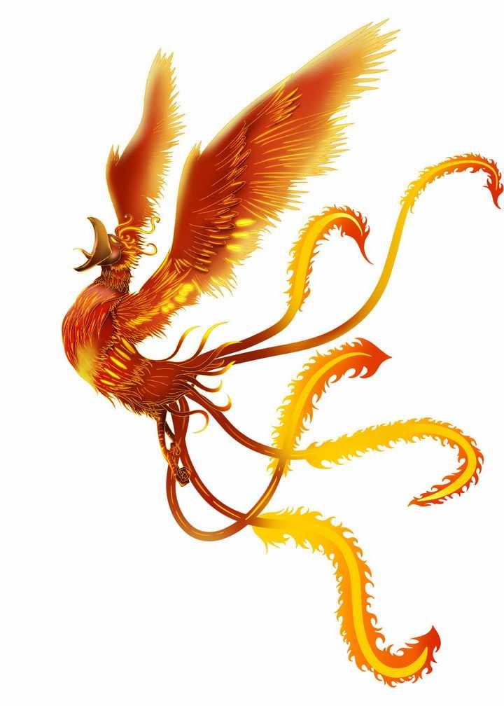 火红的火凤凰中国传统神兽png图片免抠素材