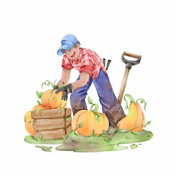 手绘插画收获南瓜的农民干农活png图片免抠素材