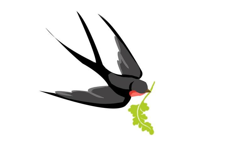叼着一根绿草的燕子春天png图片免抠素材 生物自然-第1张