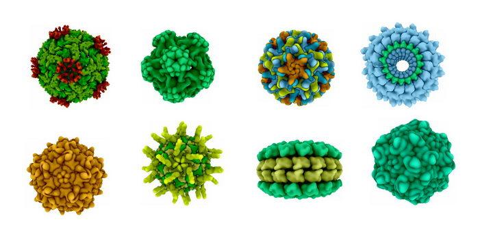 8款流行病3D病毒病原体png图片免抠素材 健康医疗-第1张