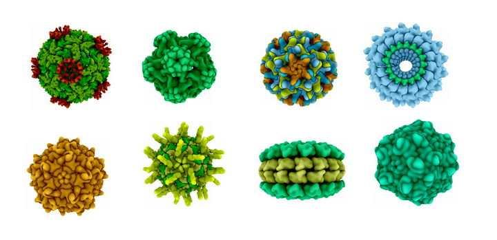 8款流行病3D病毒病原体png图片免抠素材