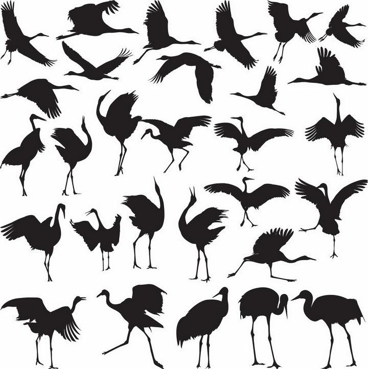 各种优雅的仙鹤丹顶鹤剪影png图片免抠矢量素材 生物自然-第1张