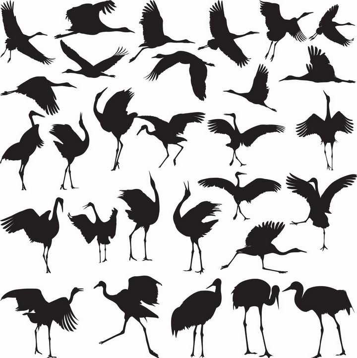 各种优雅的仙鹤丹顶鹤剪影png图片免抠矢量素材