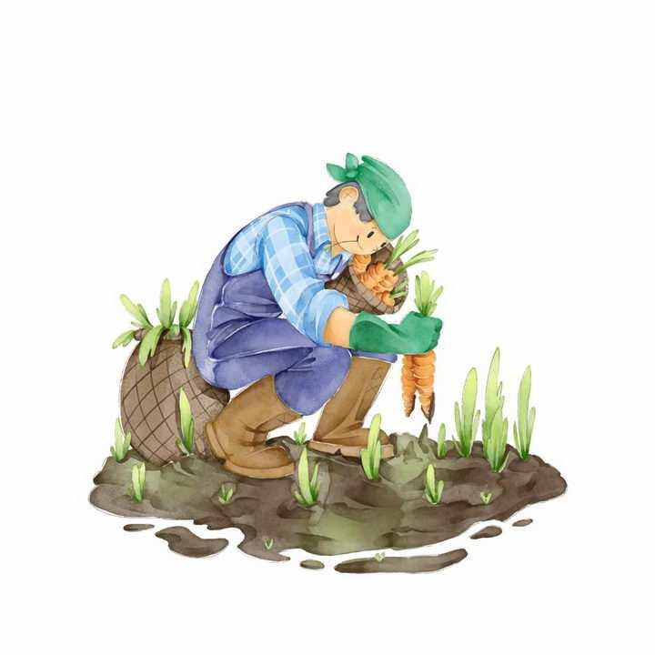 手绘插画拔萝卜的农民干农活png图片免抠素材