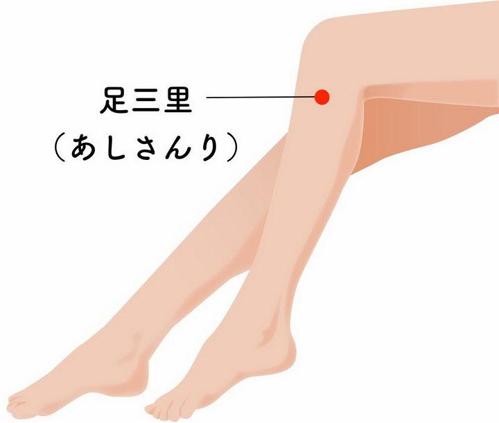 足三里的准确位置人体穴位图png图片免抠素材 健康医疗-第1张