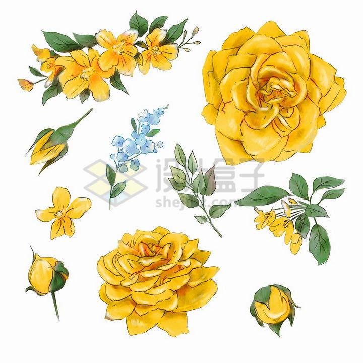 水彩画风格的黄色玫瑰花鲜花png图片免抠矢量素材