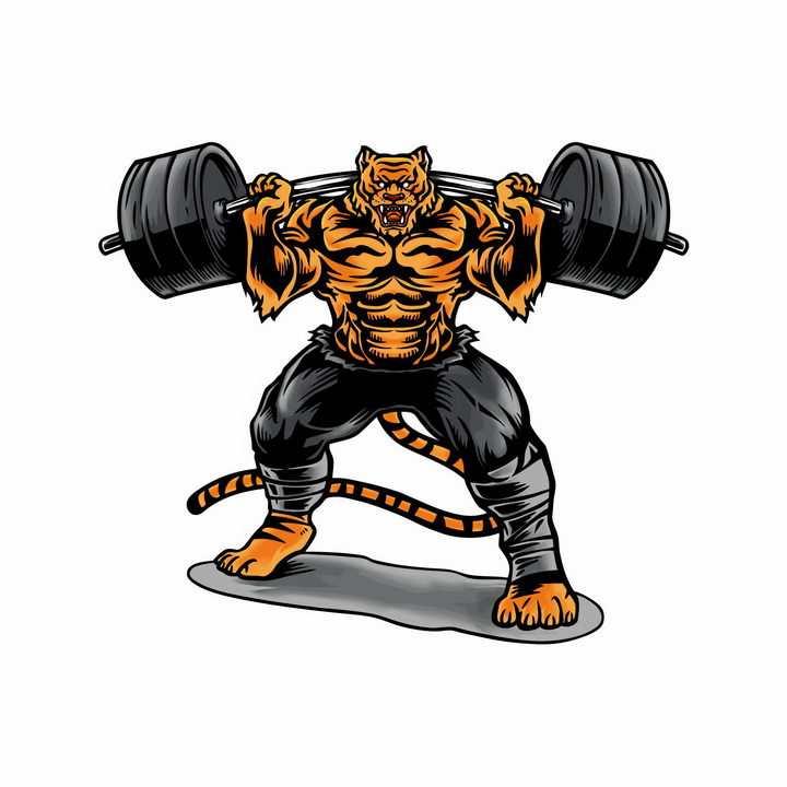 正在举重的卡通老虎健身教练png图片免抠矢量素材