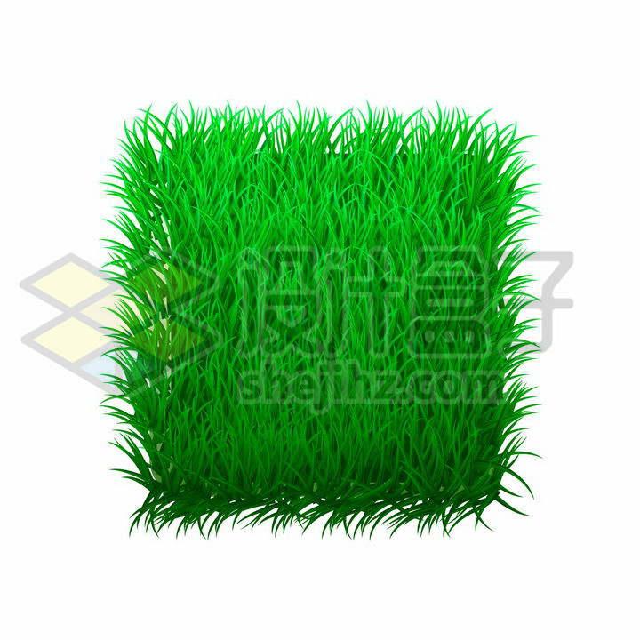 绿色青草地草坪方块标题框文本框png图片免抠矢量素材