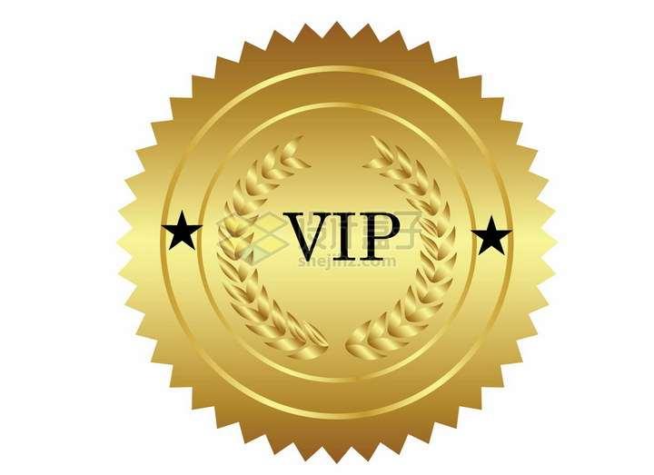锯齿状VIP会员勋章标志png图片免抠矢量素材