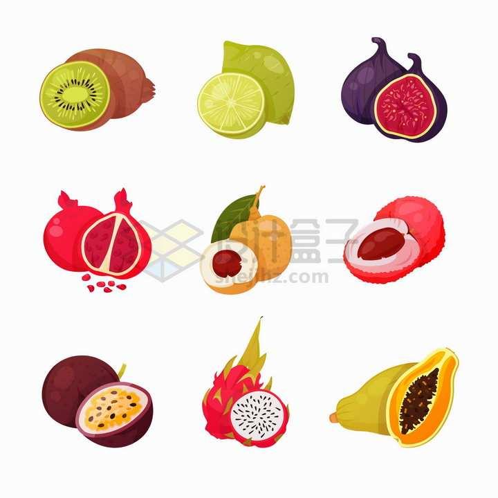 猕猴桃柠檬无花果石榴荔枝百香果火龙果等美味水果png图片免抠矢量素材