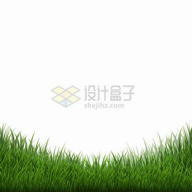 浓密的青草地组成的边框装饰png图片免抠矢量素材